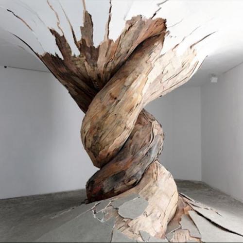 woodwhite